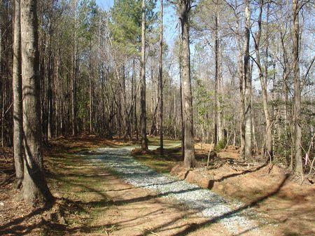 Turkey Creek - 127 Acres : Jeffersonville : Twiggs County : Georgia