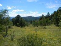 Teller Park Ranch