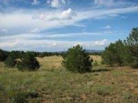Bull Ridge Ranch