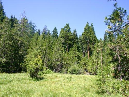 Grizzly Peak Tract : Ashland : Jackson County : Oregon