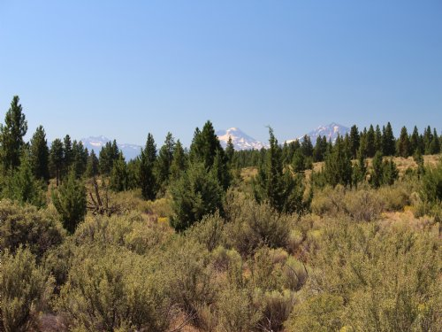 Geneva View Ranch 1109 Acres : Madras : Jefferson County : Oregon