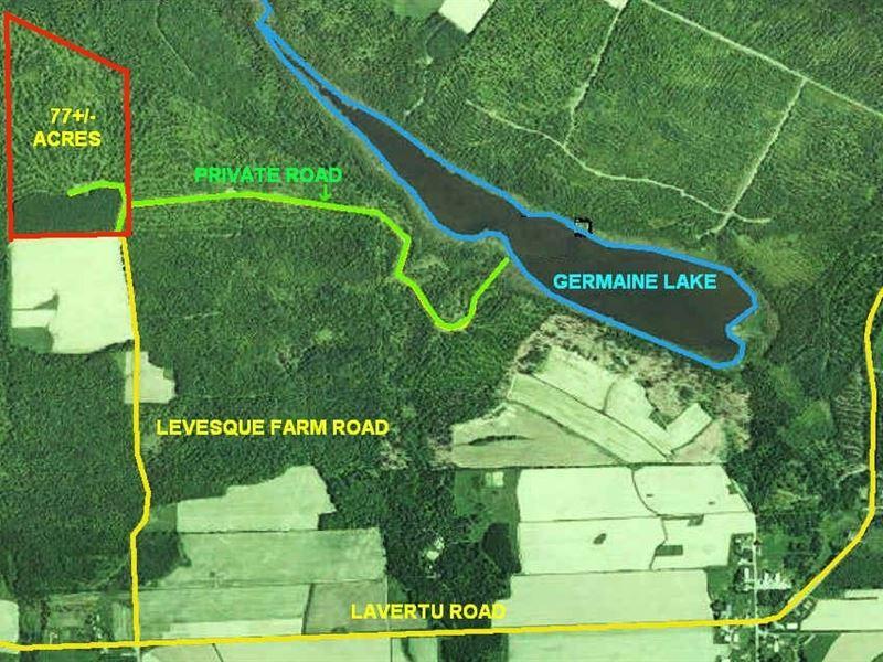 77 Acres In Madawaska Me Ranch For Sale By Owner Madawaska