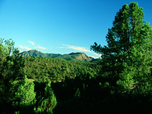 Northwest Azwilderness Ranch : Peach Springs : Mohave County : Arizona