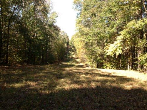 Hunting, Timber, Investment : Bolingbroke : Monroe County : Georgia
