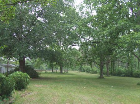 143 Acres- A Perfect Rural Getaway : Grady : Montgomery County : Alabama