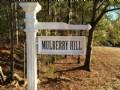 Just Reduced Beautiful Homesite : Barnesville : Lamar County : Georgia