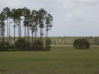 3 Creeks Crossing : Green Cove Springs : Clay County : Florida