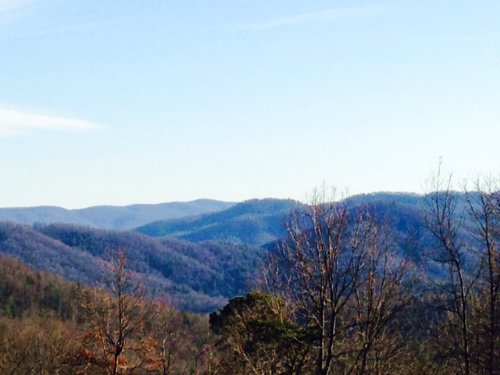 406.41 +/- Acres : Wilkesboro : Wilkes County : North Carolina