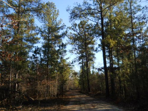 110 Ac Joe Stephens Rd. : Franklin : Heard County : Georgia
