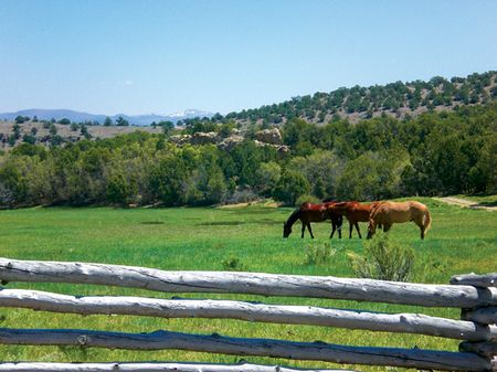 West Cedar Ranch : Cedar City : Iron County : Utah