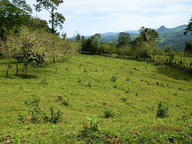 Mtn View 12.9 Ac Ranch, Springs : Santa Teresita De Turrialba : Costa Rica
