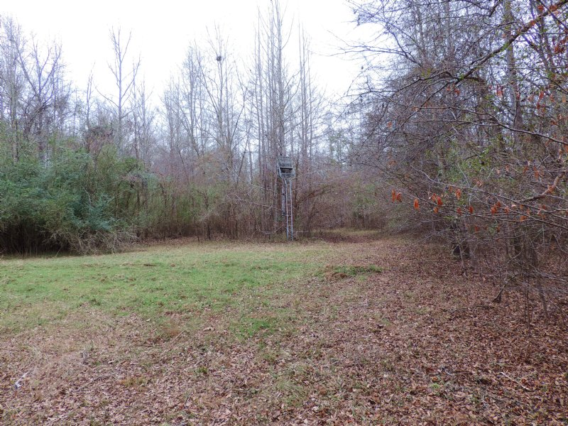 Little River Deer Camp : Eatonton : Putnam County : Georgia