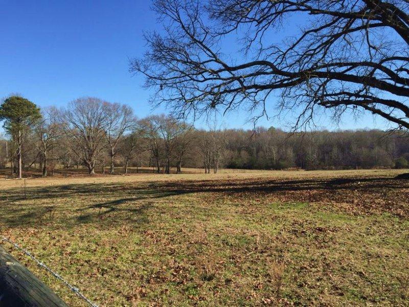 Rickenbaker Farm : Newnan : Coweta County : Georgia