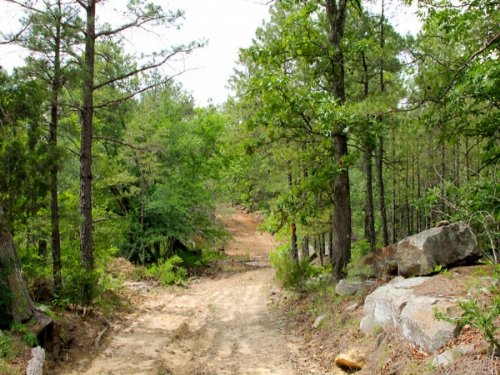 10.67 Acre Trophy Ridge Iii : McAlester : Pushmataha County : Oklahoma