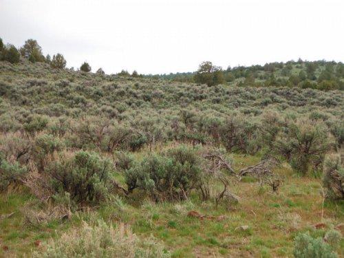 20.62 Acres Moon Valley Ranch : Susanville : Lassen County : California