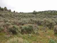 20.62 Acres Moon Valley Ranch : Susanville : Lassen County : California