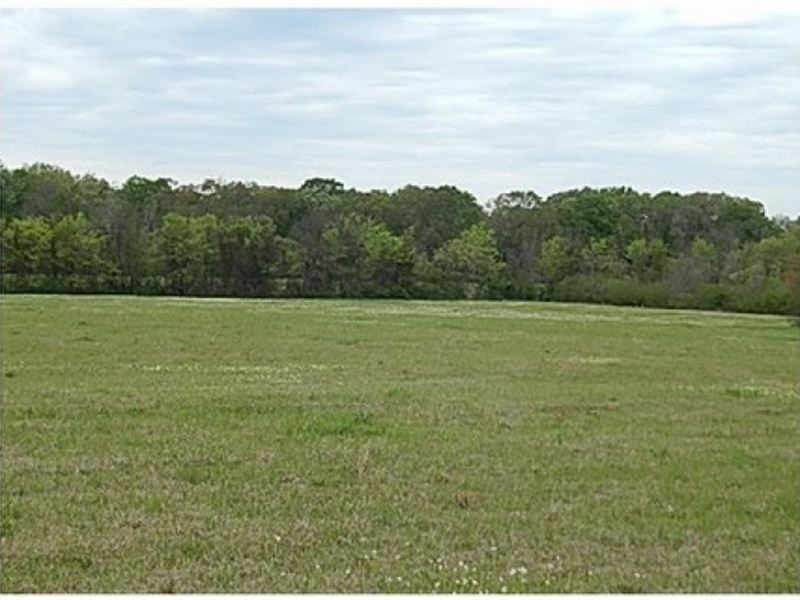 86 Acres In Scott County In Forest : Forest : Scott County : Mississippi