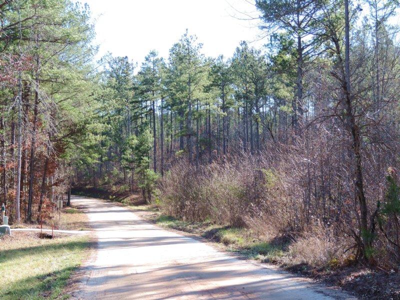 The Tarkington Tract : Ball Ground : Cherokee County : Georgia