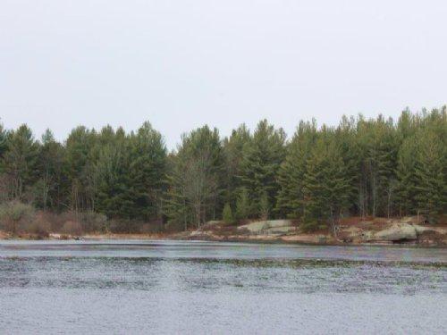 Riverfront Land Oswegatchie River : Fine : St. Lawrence County : New York
