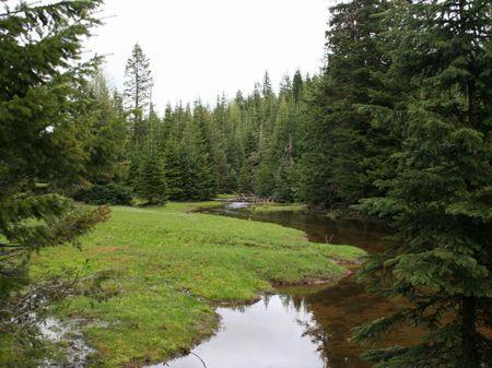 Government Mountain Ranch : Milton Freewater : Umatilla County : Oregon