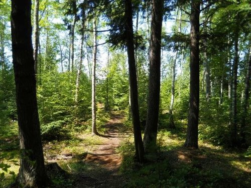 Lakeshore Dr (66), Mls# 1085042 : Ontonagon : Michigan