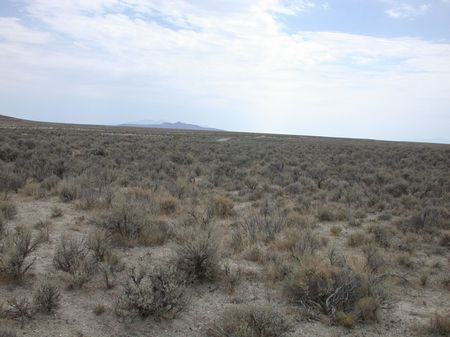 160 Acres Ranch Land County Rd Frnt : Park Valley : Box Elder County : Utah