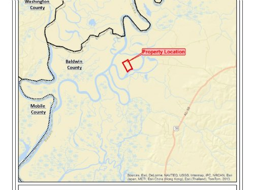 Private Alabama River Tract : Stockton : Baldwin County : Alabama