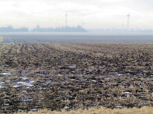 50 Acres High Producing Farmland : Toronto : Deuel County : South Dakota