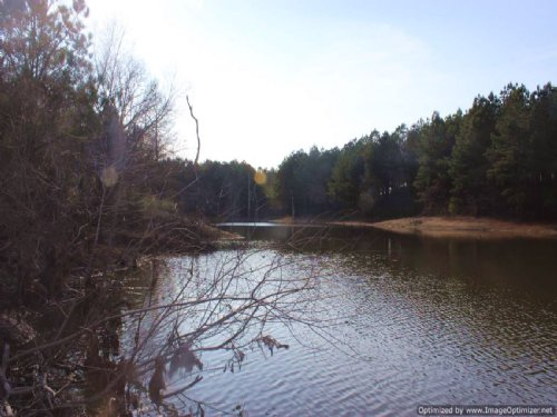 Recreational 104 Acres : Durant : Holmes County : Mississippi