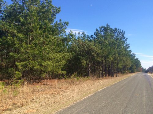 Old Oak Tree Road Tract : Waterloo : Laurens County : South Carolina