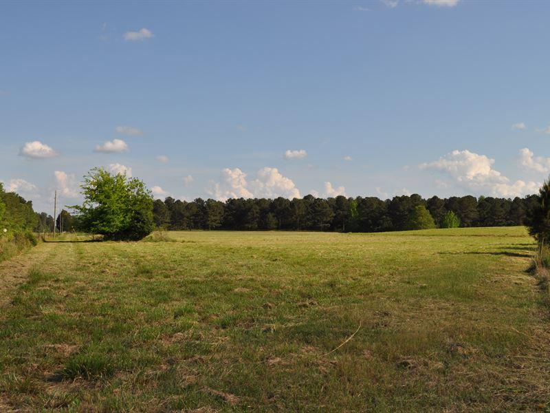 War Hill Farm - 95.17 Acres : Washington : Wilkes County : Georgia