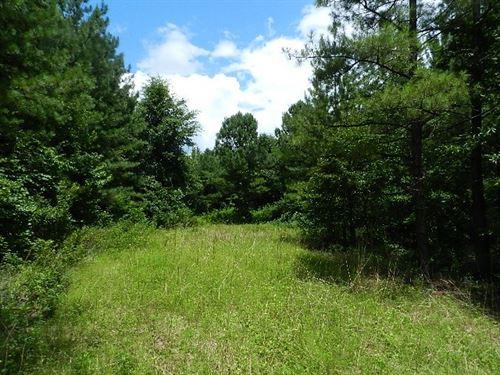 Homesite & Hunting Near Macon : Irwinton : Wilkinson County : Georgia
