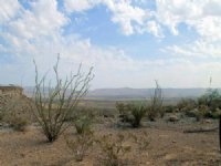 25 Acres Ranch Land, Undeveloped
