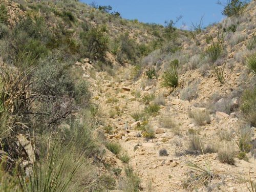 40 Acres With Rough Terrain : Terlingua : Brewster County : Texas