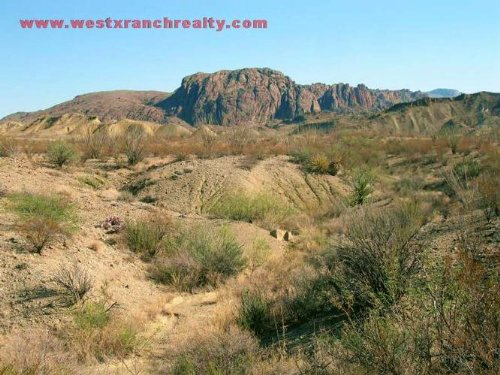 160 Acres In Brewster County, Texas : Study Butte : Brewster County : Texas