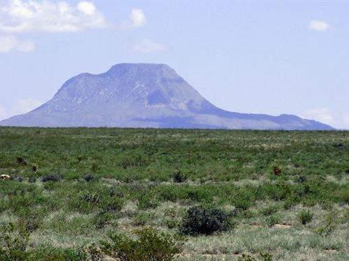 3220 Acres In Brewster County, Texa : Alpine : Brewster County : Texas