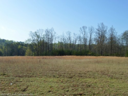 16.82 Acres On Landrum Mill Road : Campobello : Spartanburg County : South Carolina