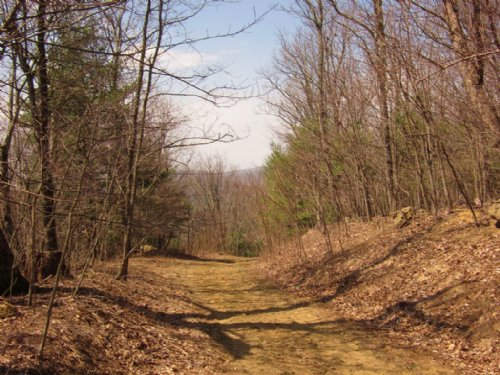 20.48+/- Acre Home Site : Bent Mountain : Roanoke County : Virginia