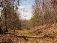20.48+/- Acre Home Site : Bent Mountain : Roanoke County : Virginia