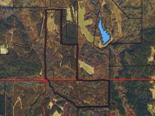 106+/- Ac Perfect For Hunting : Troy : Pike County : Alabama