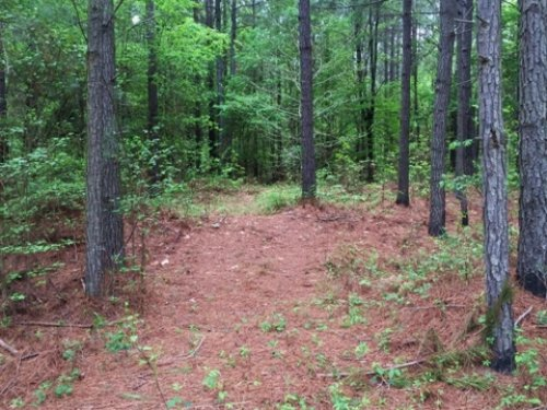 74 Acres Of Recreational Land : Pheba : Clay County : Mississippi