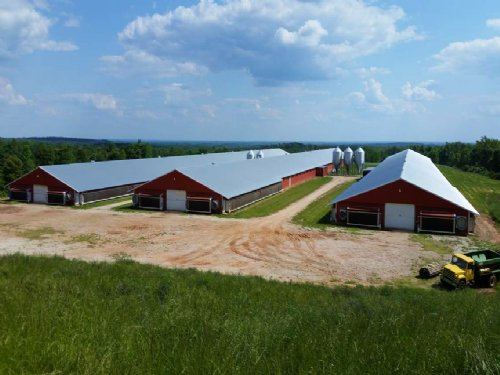 3-mega House Broiler Farm On 36 Ac : Roanoke : Randolph County : Alabama