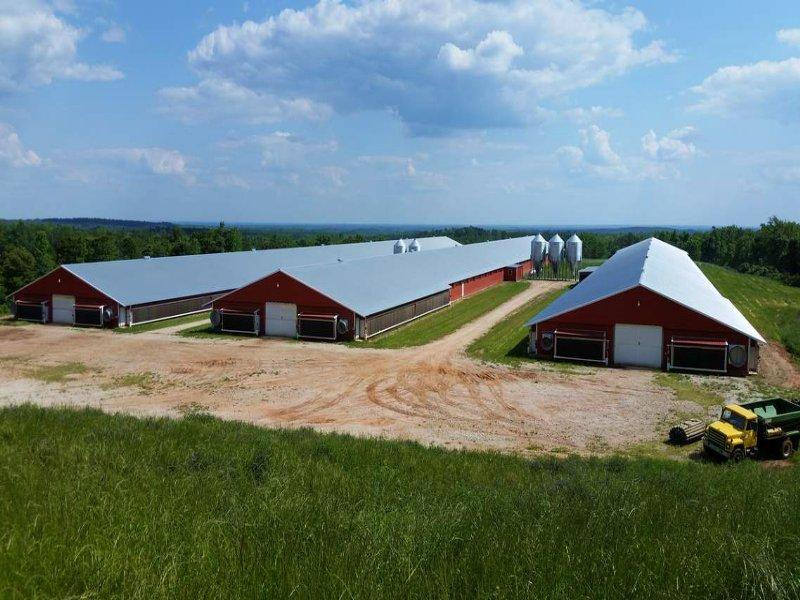 Auctions In Alabama >> 3-mega House Broiler Farm On 36 Ac : Ranch for Sale : Roanoke : Randolph County : Alabama ...