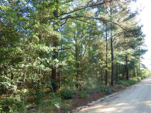 Meridy Rd Tract : Metter : Candler County : Georgia