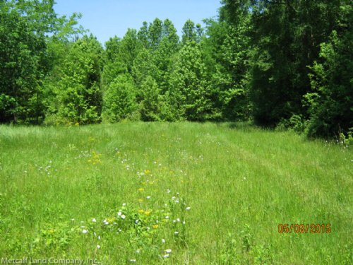 Blaney Road Homesite And Acreage : Chester : South Carolina