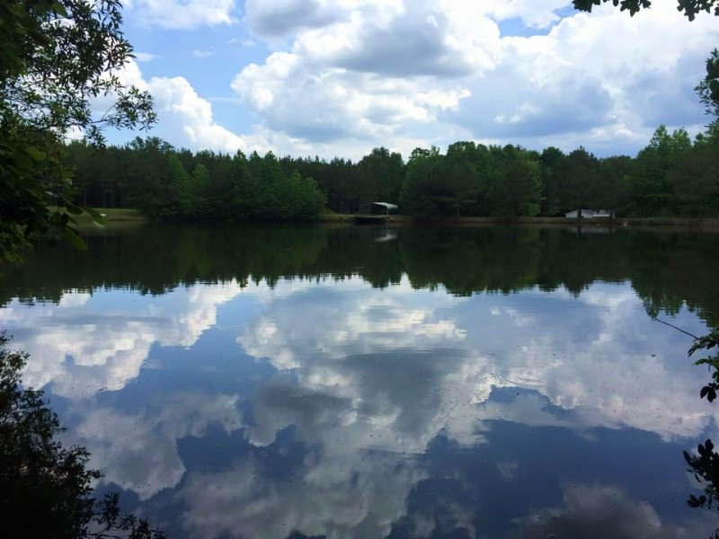 214 Acres With 2 Houses And 8 Ponds : Camden : Kershaw County : South Carolina