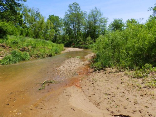 80 Ac Tillable, Hunting And Creek : Perry : Pike County : Illinois