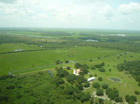 Old Kissimmee Ranch : Okeechobee : Okeechobee County : Florida