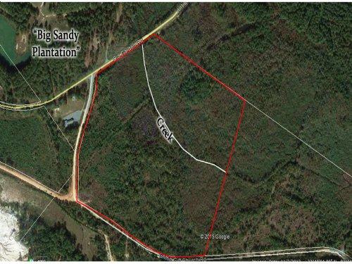 50 Acres : Dry Branch : Twiggs County : Georgia