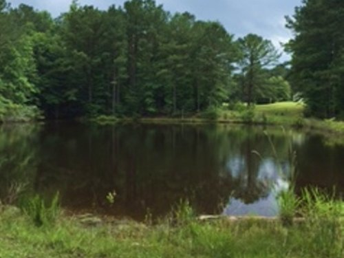 46 +/- Ac With Modular Home : Jack : Coffee County : Alabama